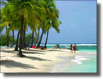 Caravelle Beach in Ste. Anne, Guadeloupe